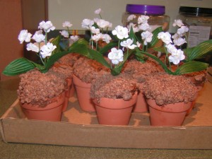 Mother's Day Craft Idea Cupcake Flower Pots