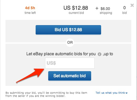 ebay maximum bid