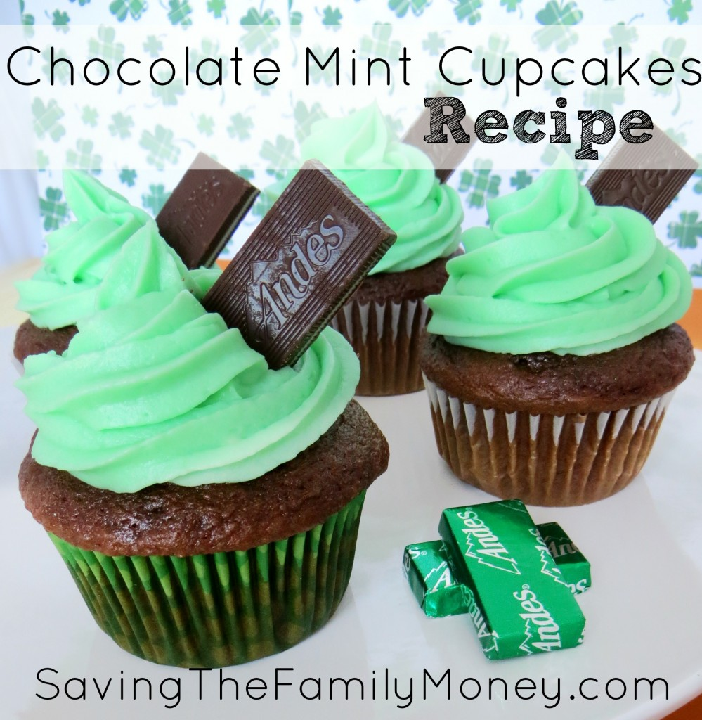 Chocolate Mint Cupcakes Recipe Saving The Family Money