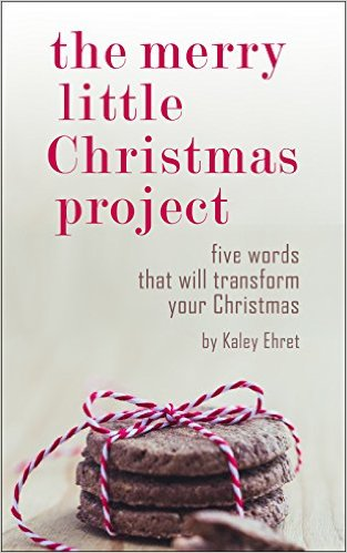 The Merry Little Christmas Project